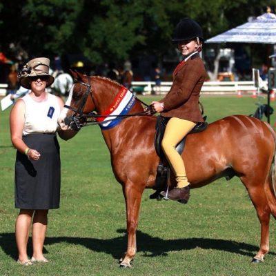 Tooravale Perrier Royal Show winner